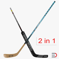 hockey sticks 3d max