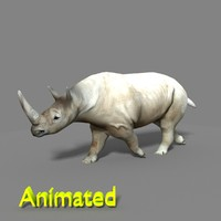 stephanorhinus rhinoceros 3d model