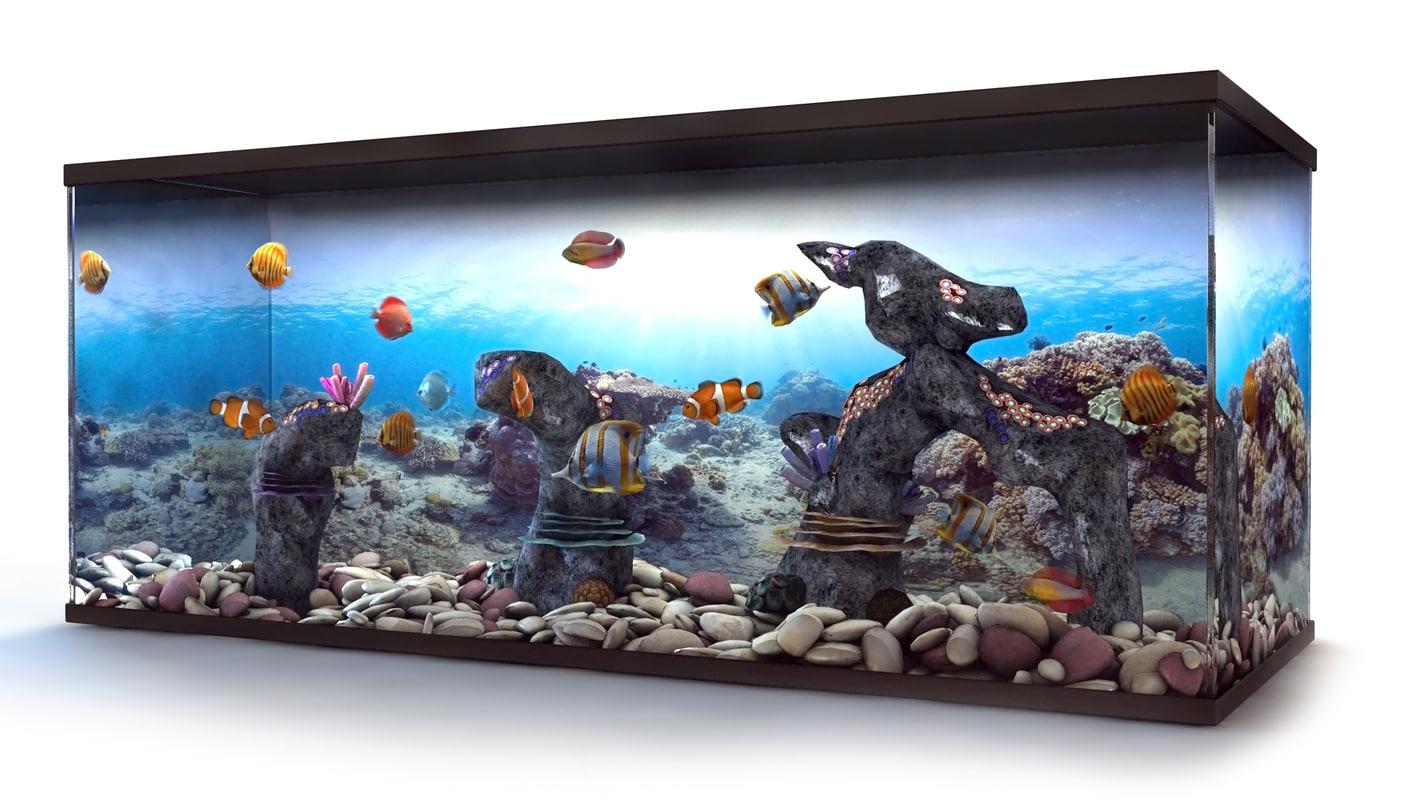 aquarium tropical fish 3d max