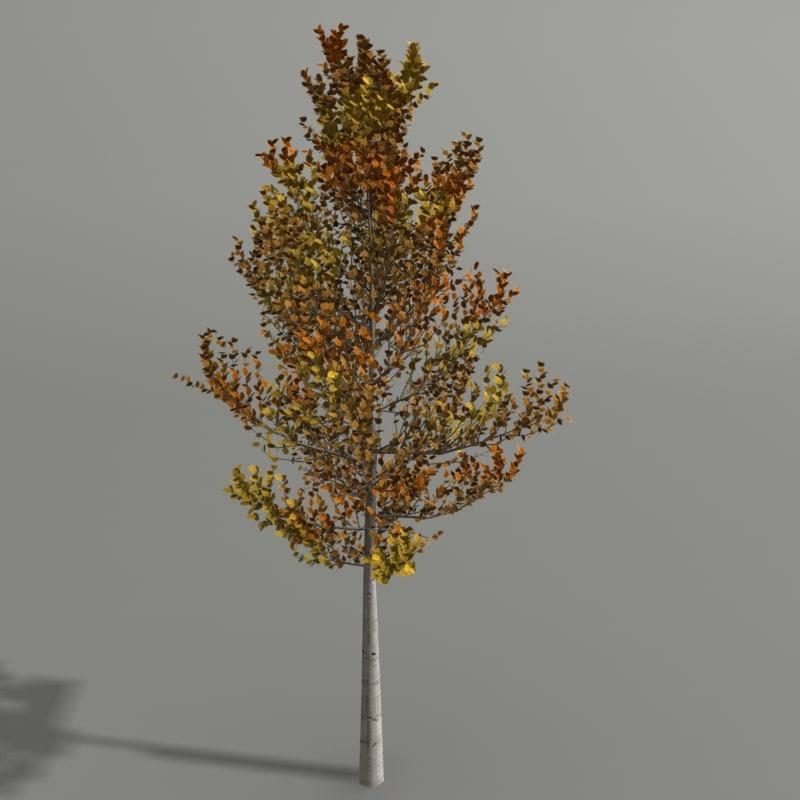 3d model birch autumn
