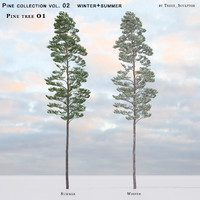 Pine-tree_01 (vol_02) summer+winter