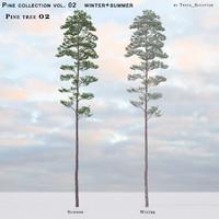 Pine-tree_02 (vol_02)summer+winter