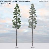 Pine-tree_04 (vol_02)summer+winter