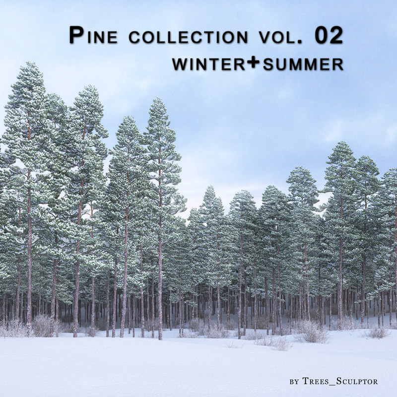 3d model of pine-tree pine trees