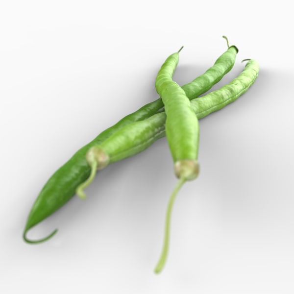 3d realistic green bean