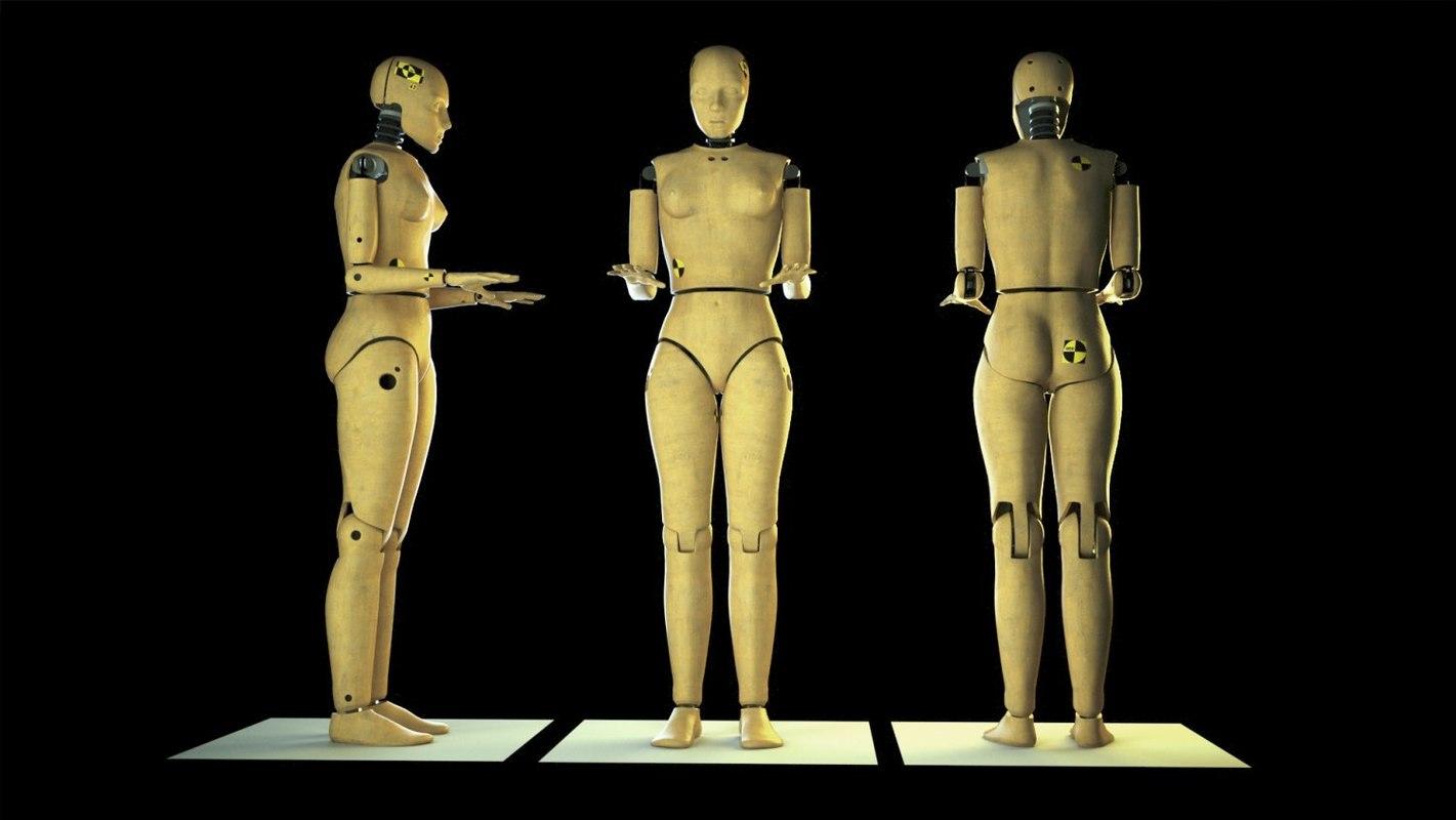 crash test dummy female human 3d model