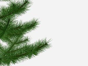 petite fir-tree 3d 3ds