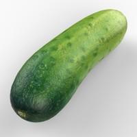 3d realistic cucumber