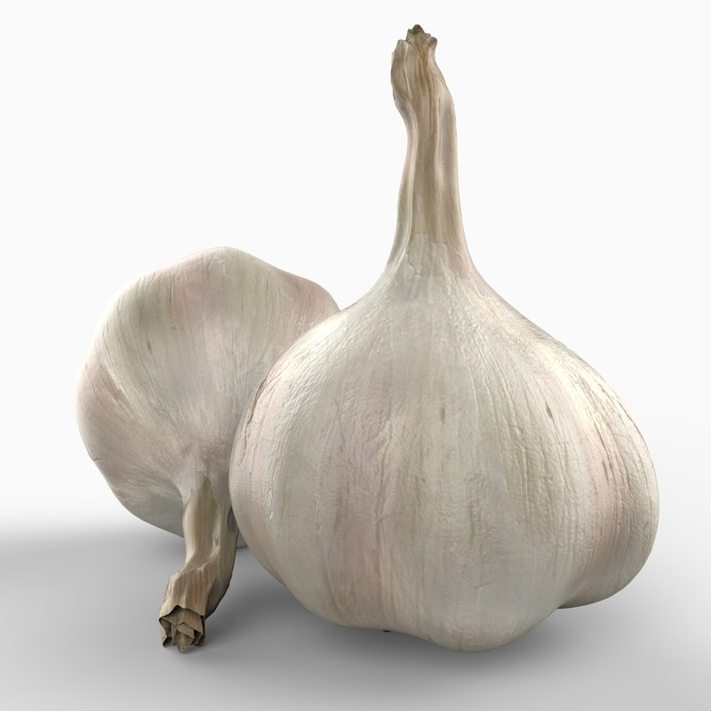3d realistic garlic model