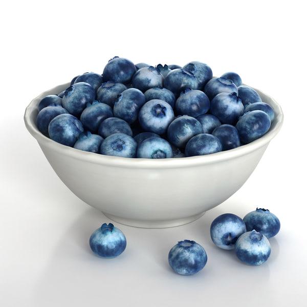 blueberries berries 3d model