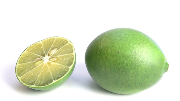 realistic lime 3d model