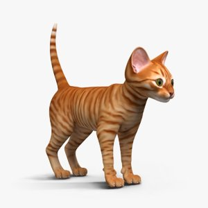 3d model of kitten red black