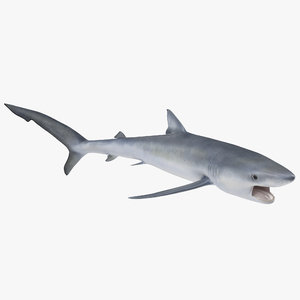 3ds max blue shark pose 2