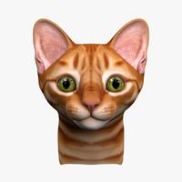 Kitten Head (No Hair)