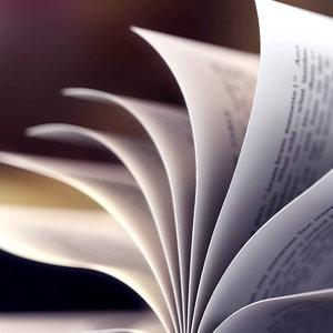 3d model paper book loop