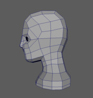 free head basemesh clean 3d model