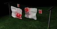 bloody clothesline 3d model