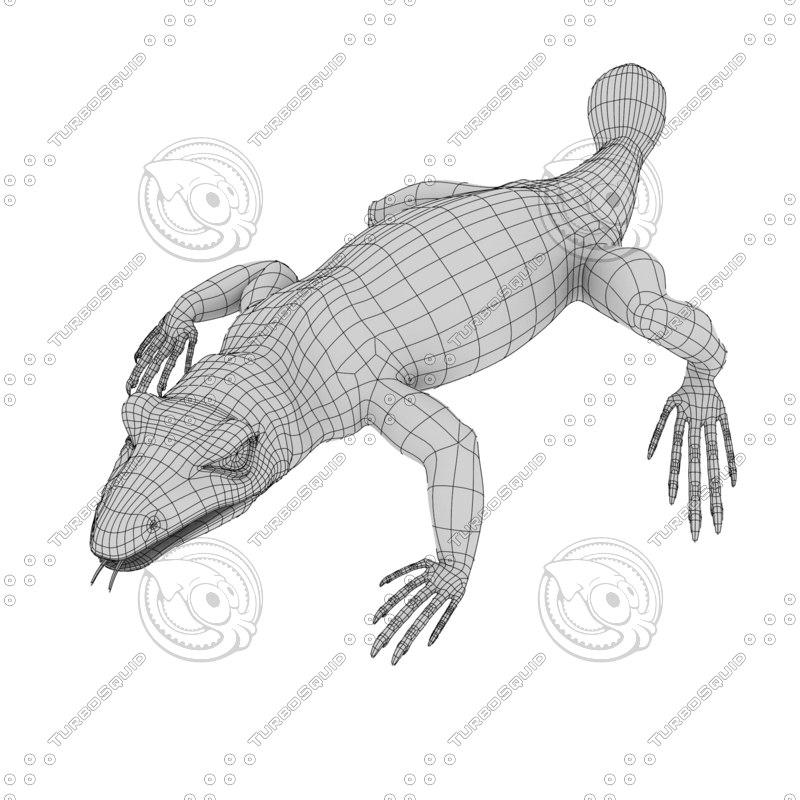 lizard 3d obj