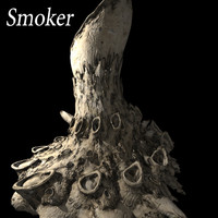 3d smoker