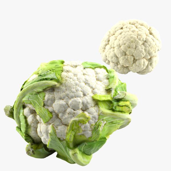 3ds max cauliflower flower