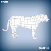 base mesh tiger 3d model