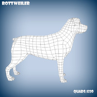 3d base mesh rottweiler dog model