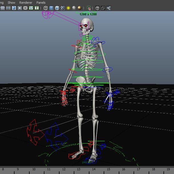 skeleton rig ma free