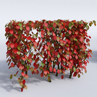 set autumn bushes 3d model