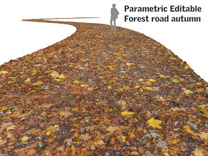 road autumn forest 16k 3d model