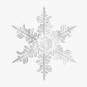 snowflake 5 max