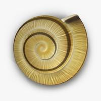 Snail Shell 2 3D Model