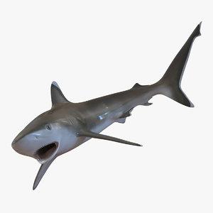 silvertip shark pose 2 3d 3ds