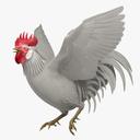 rooster 3D models