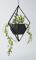 decoartive plant 3d max
