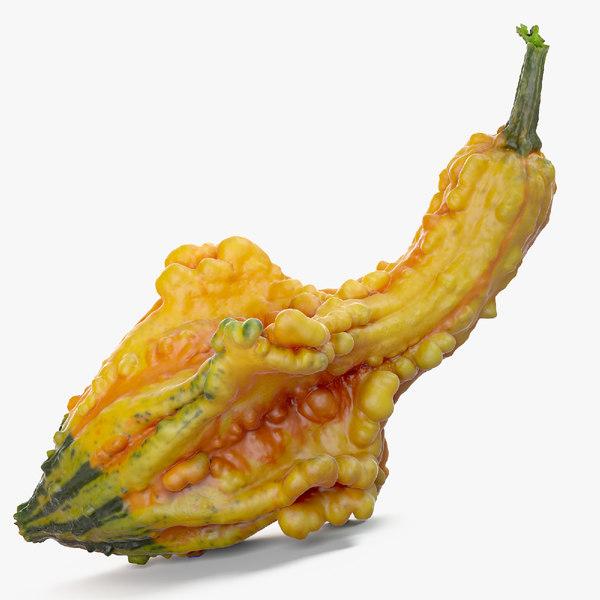 3d squash crookneck pumpkin model