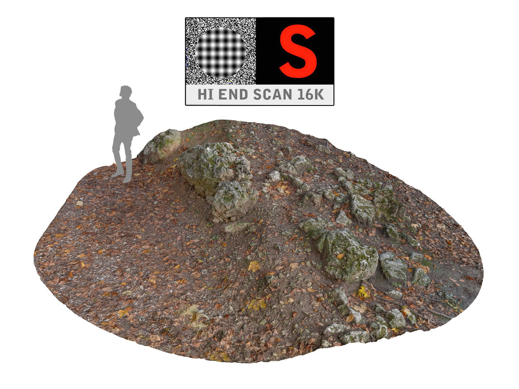 3d rock ground forest autumn model