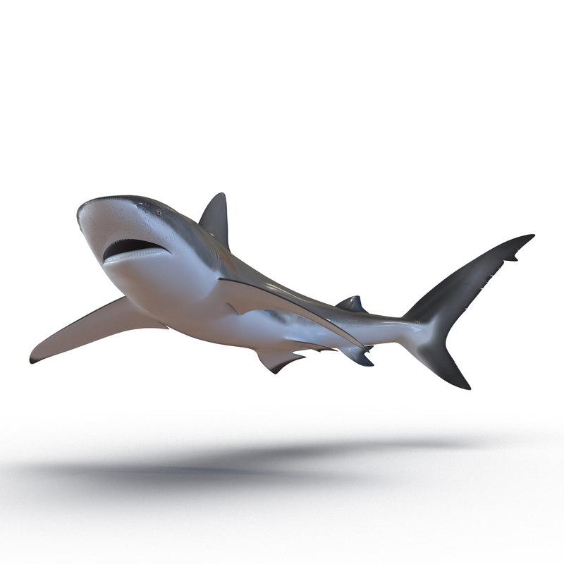 3ds max dusky shark pose 2