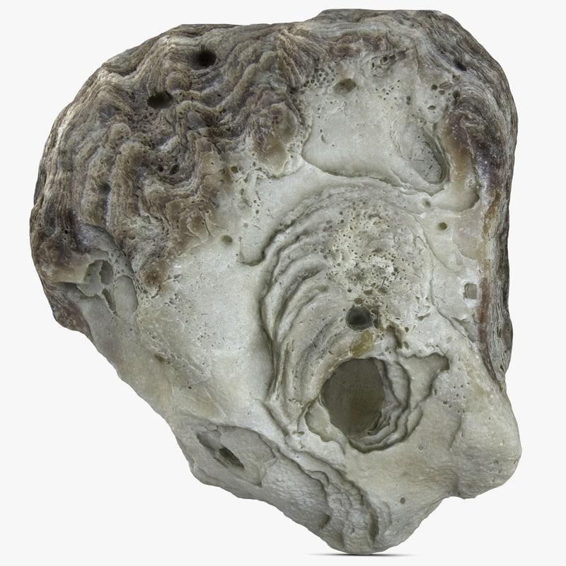 max shell