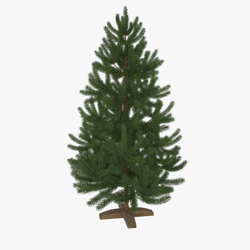 christmas tree pine 3d ma