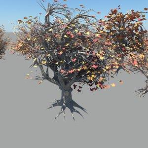 maya tree flower