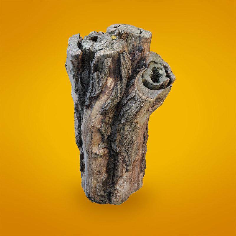 3d realistic scanned trunk model