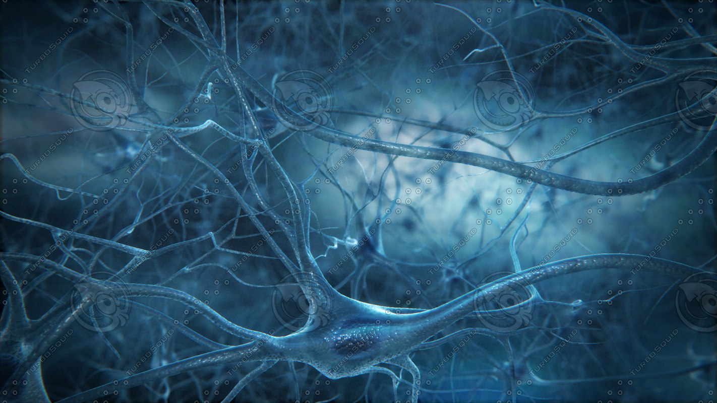 neurons ride import pack 3d model