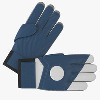 3d goalie gloves blue