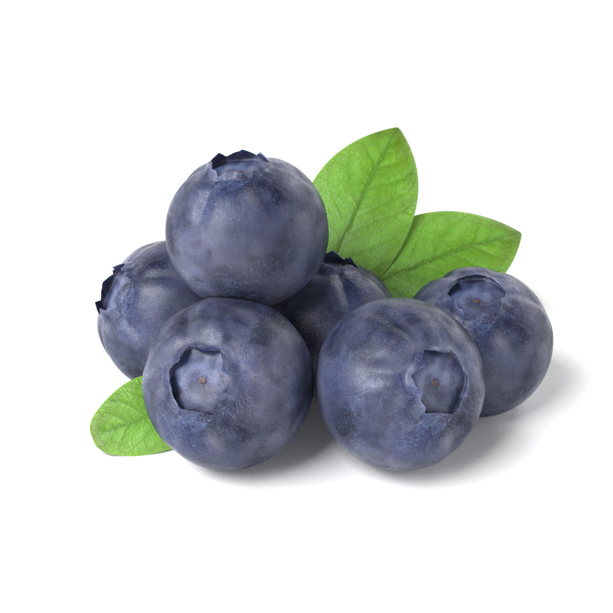 obj bluberries blueberry