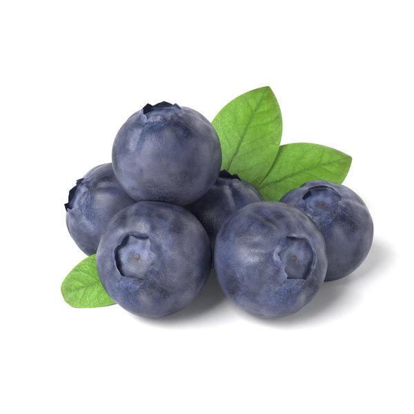 obj bluberries blueberry