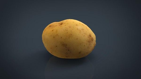 3d model real potato