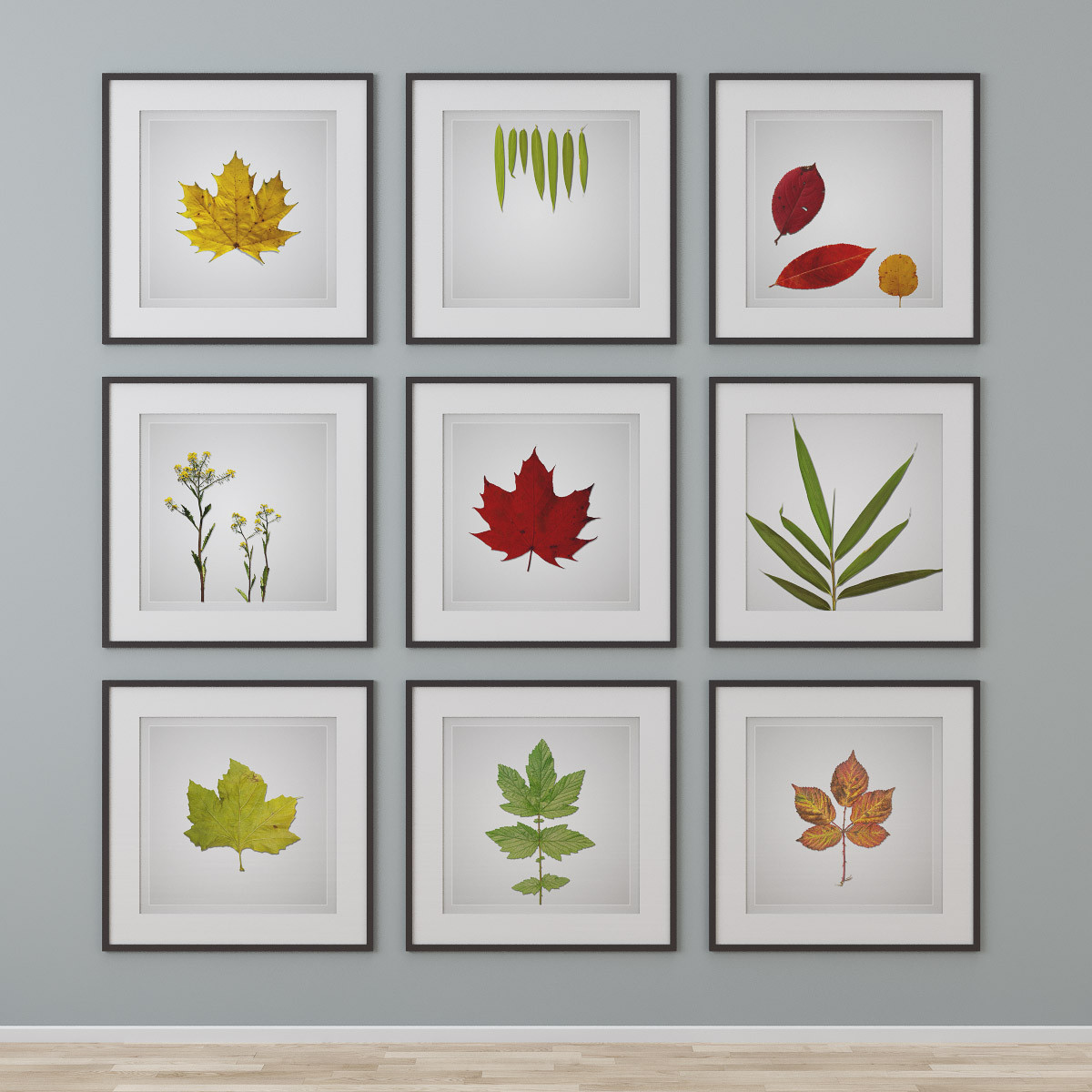3d graphic design photo wall model