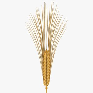 wheat scanline 3d max