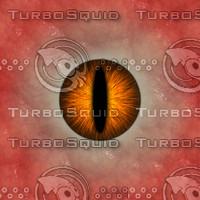 Animal Eye Texture