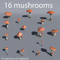 R Mushrooms 001 collection